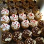 Cupcakes variedad de sabores